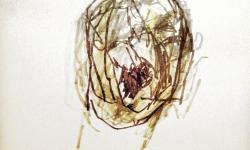 kopf 6, Blindzeichnung, Tuschestift auf getöntem Papier, 38 x 55 cm, 2012