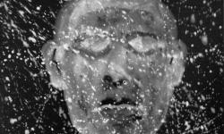 jandl 2: planet zoom, 2000, Acryl auf schwarz lackierter Hartfaser, 28 x 36 cm