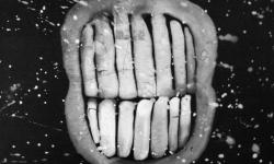 jandl 5: hohngelächter, 2000, Acryl auf schwarz lackierter Hartfaser, 28 x 36 cm