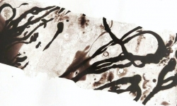12 lucky skin, jahresringe, 2013, Lackskin auf Bütten, 18 x 21 cm