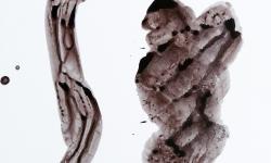 03 hallo was gibts?, 2013, Beize auf Glanzpappe, 12 x 12 cm