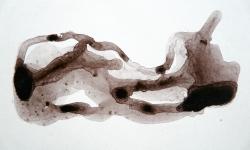 11 schlafen und träumen, 2008, Beize auf Karton, 17 x 23 cm