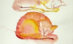 provokazz, skizze 09, 40 x 40 cm, 2005