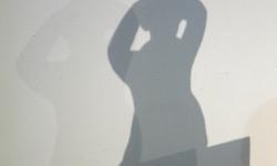 schatten 03_exhib wanda p., 2012