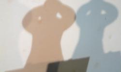 schatten 02_exhib wanda p., 2012