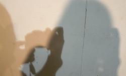 schatten 06_exhib wanda p., 2012