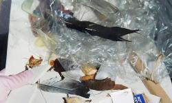 legoindianer ruft plastiksquaw, 2006, 45 x 30 cm, Müllassemblage aus der Reihe Transitorische Projekte